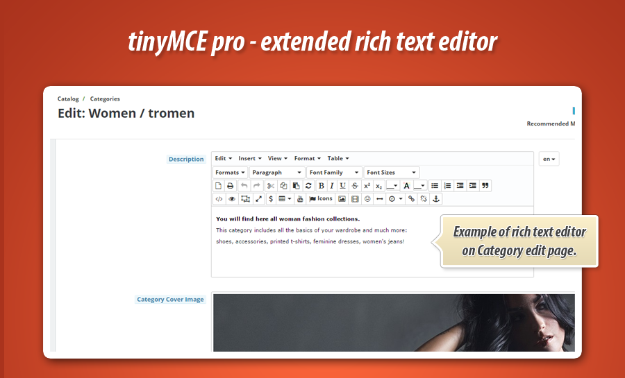 3-tinymce-pro-category-edit-page-descrip