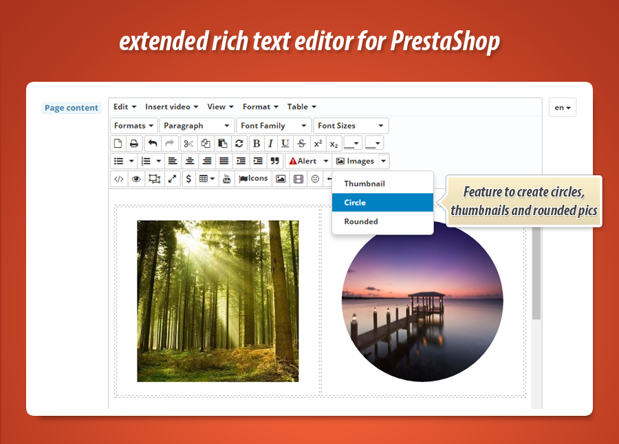 tiny-rich-text-editor-circle-image.png