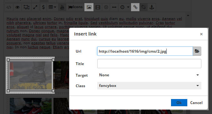 fancybox cms page